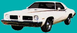 1973 LeMans GTO Deluxe Body Decal Kit