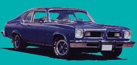 1974 GTO Deluxe Body Decal Kit